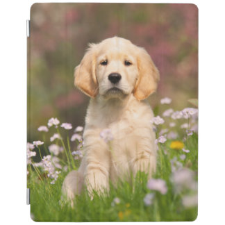Golden Retriever puppy a cute Goldie iPad Smart Cover