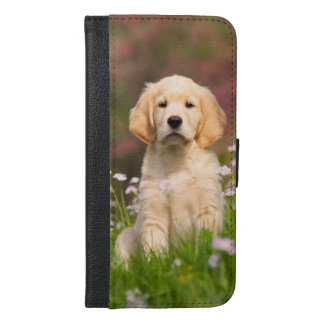 Golden Retriever puppy a cute Goldie iPhone 6/6s Plus Wallet Case