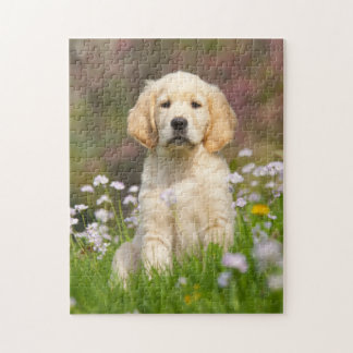 Golden Retriever puppy a cute Goldie Jigsaw Puzzle