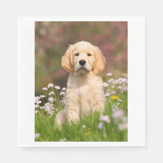 Golden Retriever puppy a cute Goldie Paper Napkin