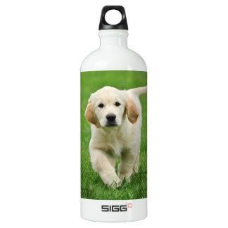 Golden retriever puppy aluminum water bottle