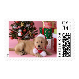 Golden Retriever Puppy and Christmas 3 Postage