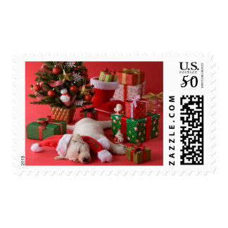Golden Retriever Puppy and Christmas Postage