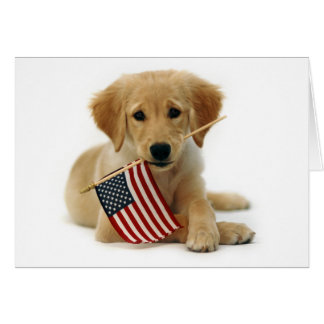 Golden Retriever Puppy and Flag Cards