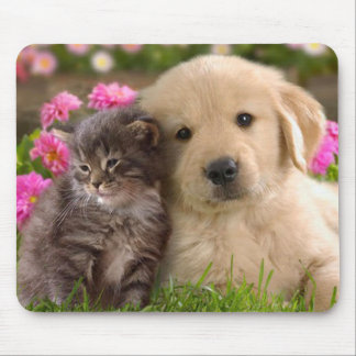 Golden Retriever Puppy and Kitten Mouse Pad