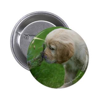 Golden Retriever Puppy Button