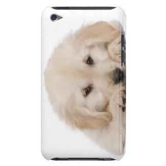 Golden retriever puppy iPod touch cases