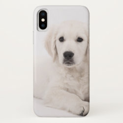 Golden Retriever Puppy iPhone X Case