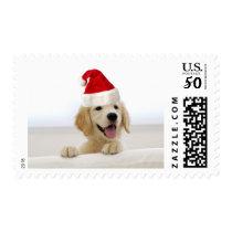 Golden Retriever Puppy Christmas Postage Stamp