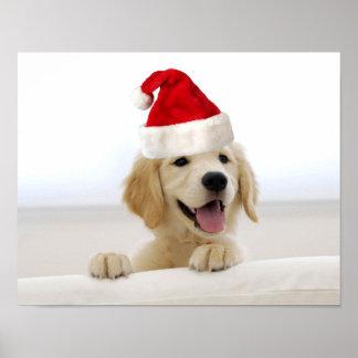 Golden Retriever Puppy Christmas Poster
