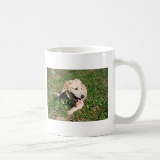 Golden Retriever Puppy Coffee Mugs