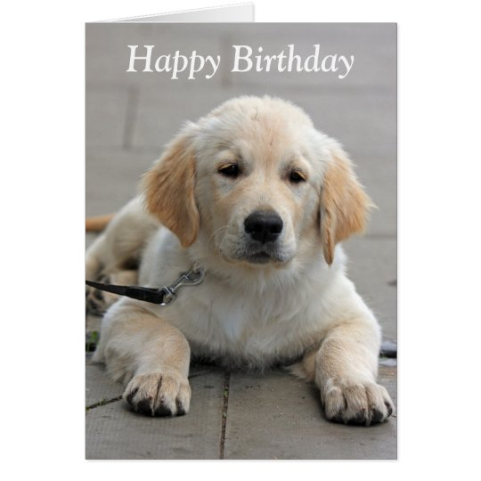 Golden Retriever puppy cute photo birthday card – Birthday Card from Dog