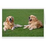 Golden Retriever Puppy Dog Blank Stationery Note Card