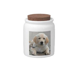 Golden Retriever puppy dog cute beautiful photo Candy Dish