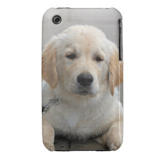 Golden Retriever puppy dog cute beautiful photo Case-Mate iPhone 3 Case