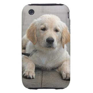 Golden Retriever puppy dog cute beautiful photo iPhone 3 Tough Case