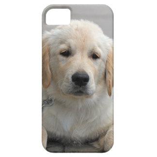 Golden Retriever puppy dog cute beautiful photo iPhone SE/5/5s Case