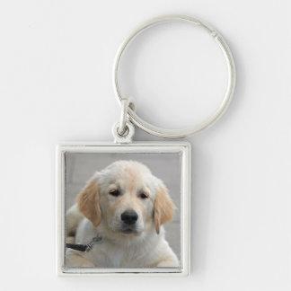 Golden Retriever puppy dog cute beautiful photo Keychain