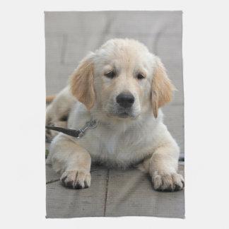 Golden Retriever puppy dog cute beautiful photo Kitchen Towel