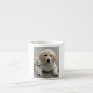 Golden Retriever puppy dog cute beautiful photo Espresso Cup