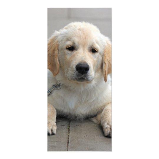 Golden Retriever puppy dog cute photo bookmark Rack Card