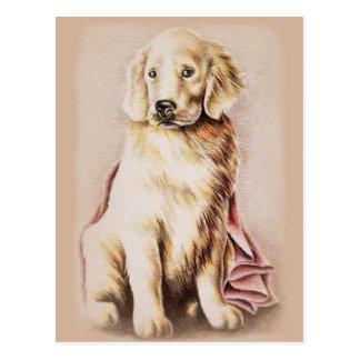 Golden Retriever Puppy dog pet portrait drawing Postcard