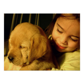 Golden Retriever Puppy Dog Photograph Poster