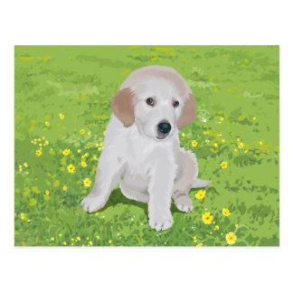 Golden Retriever Puppy Dog Postcard