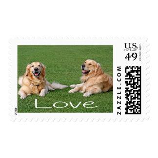 Golden Retriever Puppy Dog US Postage Stamps