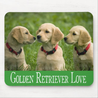 Golden Retriever Puppy Dogs Green Love Mouse Pad