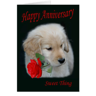 Golden Retriever Puppy Happy Anniversary Card