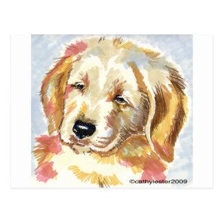 Golden Retriever Puppy Head Postcard