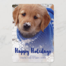 Golden Retriever Puppy Holiday