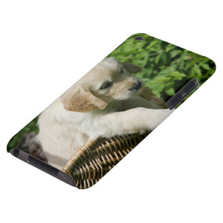 Golden Retriever Puppy in Basket iPod Touch Cases