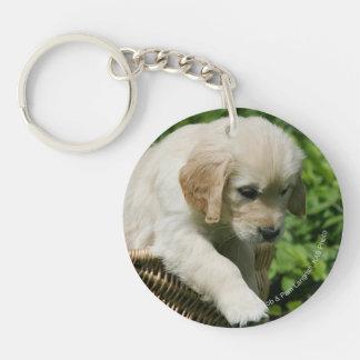 Golden Retriever Puppy in Basket Keychain