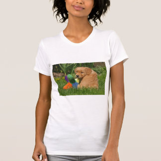 Golden retriever puppy in the grass with toy t shirt