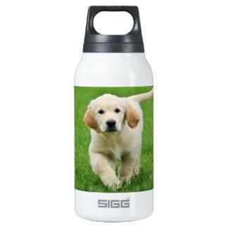 Golden retriever puppy insulated water bottle
