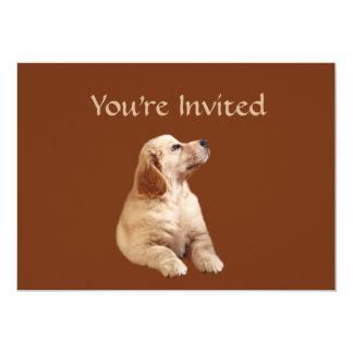 """Golden Retriever Puppy Invitation 5"""" X 7"""" Invitation Card"""