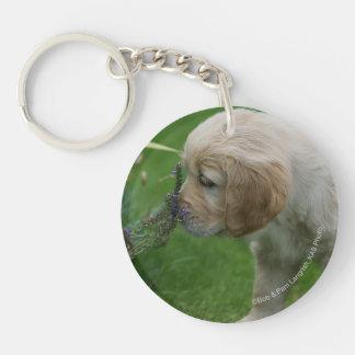 Golden Retriever Puppy Keychain