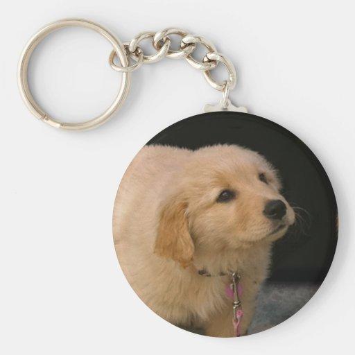 Golden Retriever Puppy Key Chain