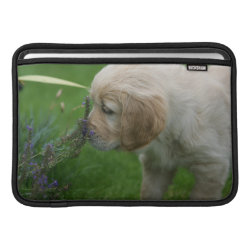 Golden Retriever Puppy MacBook Air Sleeve