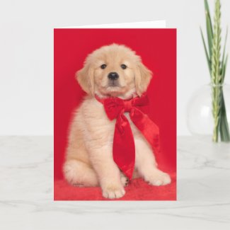 Golden Retriever Puppy Merry Woofin' Christmas Card