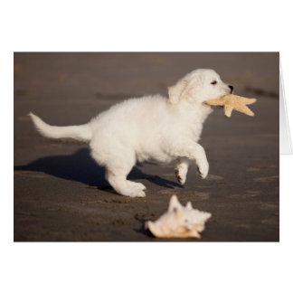 Golden Retriever Puppy Photo Card