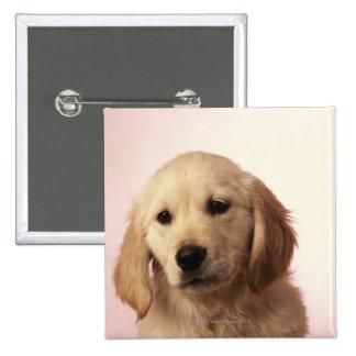 Golden Retriever Puppy Pinback Button