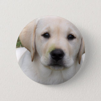 Golden Retriever Puppy Round Pin