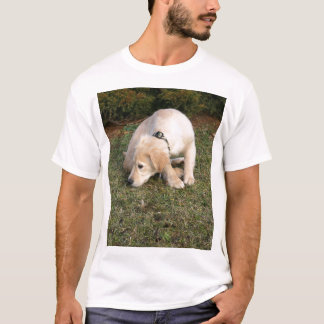 Golden Retriever Puppy Sniffing T-Shirt