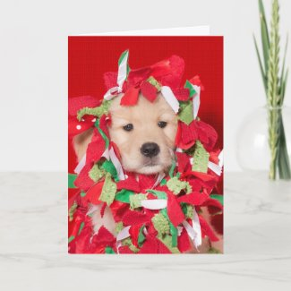 Golden Retriever Puppy Tangled in Garland Card