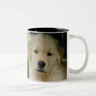 Golden Retriever puppy Two-Tone Coffee Mug