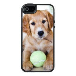 OtterBox Symmetry iPhone SE/5/5s Case with Golden Retriever Phone Cases design