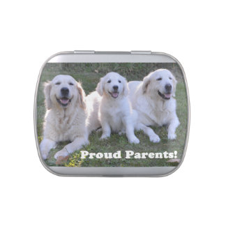 Golden Retriever Puppy with Proud Parents Jelly Belly Tin